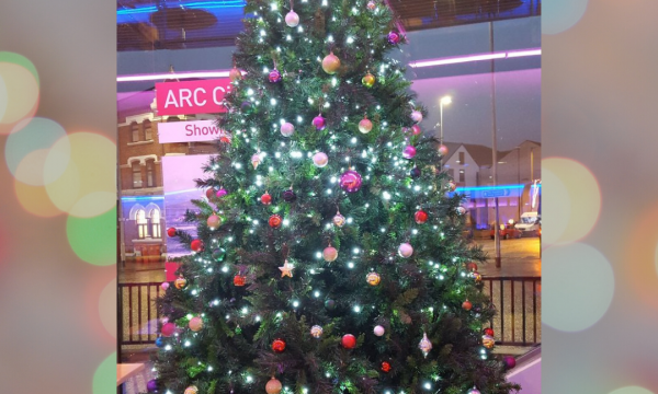 ARC's Christmas tree stands in the No 60 cafe bar