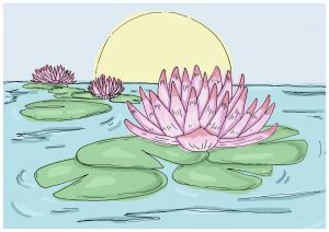 Illustration of pink waterlilies with large green leaves, blue water, and a sun on the horizon.